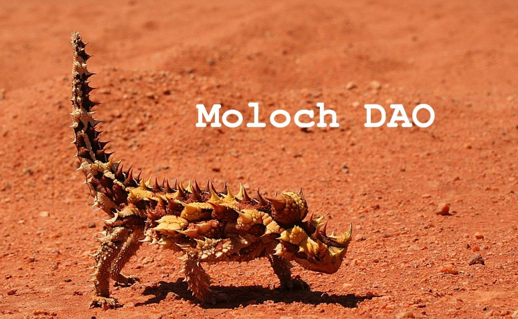 Moloch DAO explained